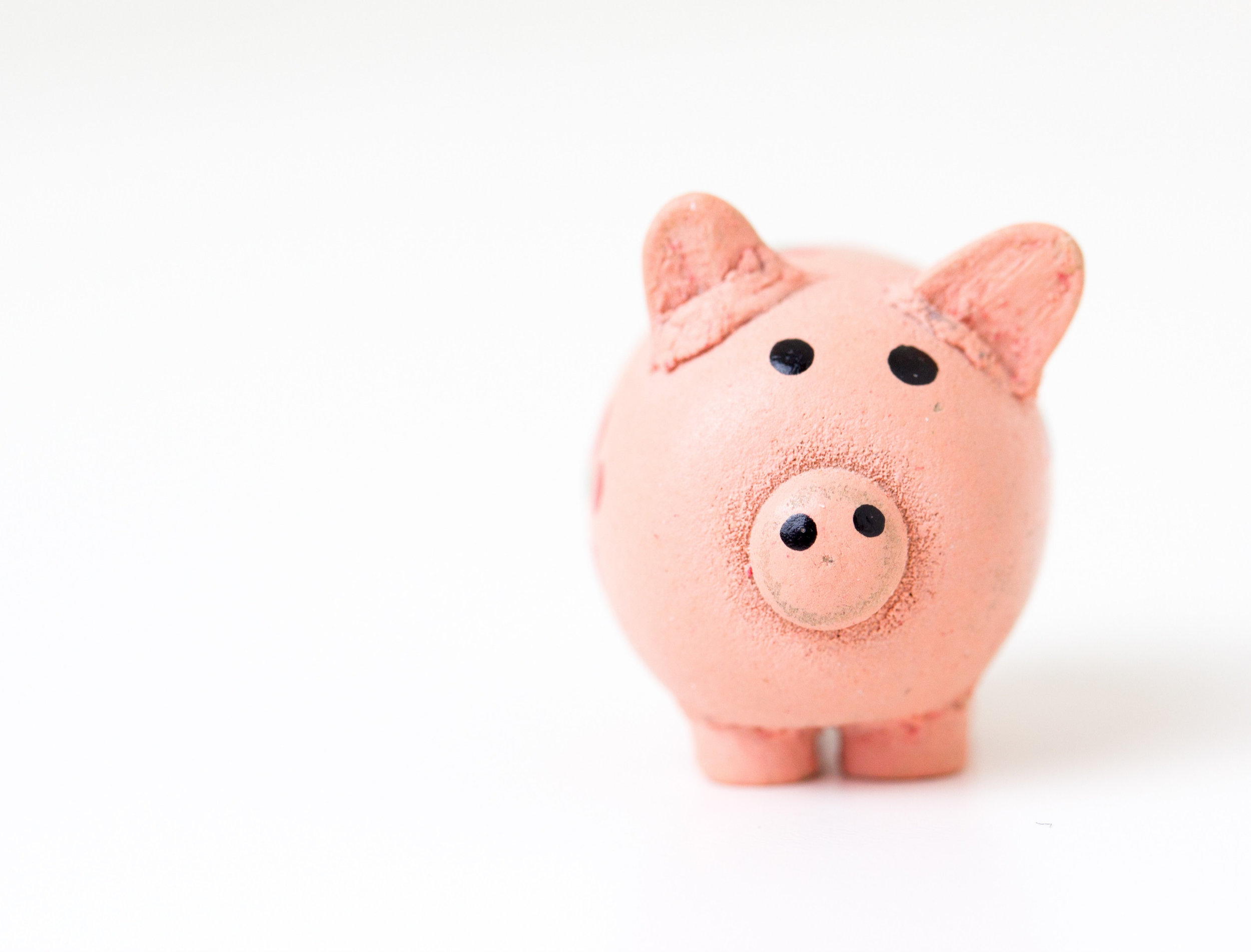 piggy bank (1).jpg