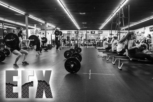 EveryDay+Fitness+Redding+CA+EFX+Training-(1).png