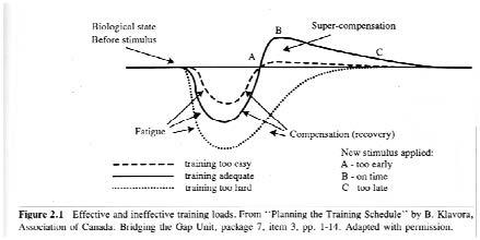 High performance training for track and field, Bowerman & Freeman 1991