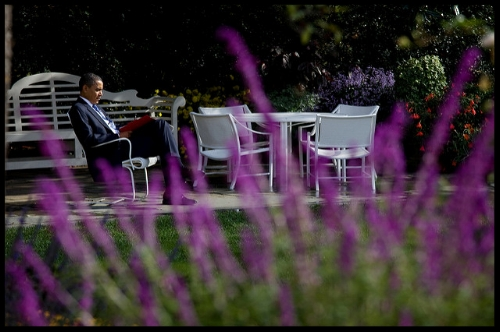 President Obama reading in a garden. Image from  Obama White House.