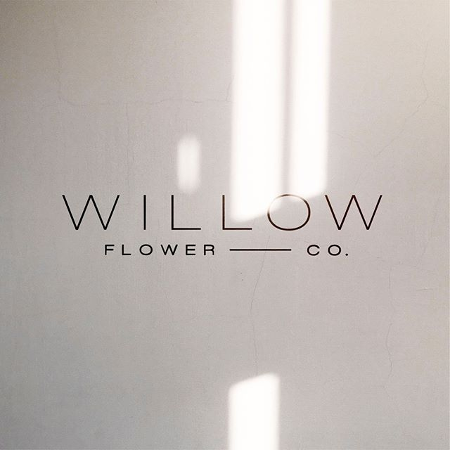 Recent launch 👉🏻Willow Flower Co. This was one of my biggest overhauls. The old brand was in dire need of a refresh and we hit the nail on the head. The brand is minimal, modern and a hair retro. @willowflowerco www.willowflowercompany.ca  -  #design #branding #logo #art #creative #typography #graphicdesigner #designinspiration #inspiration #marketing #logoinspirations #logosai #swellyyc #yyc #designstudio #minimal #modern #brandstylist #studio #graphicdesign #logodesign #designer #illustrator #floralbrand #brandidentity @willowflowerco