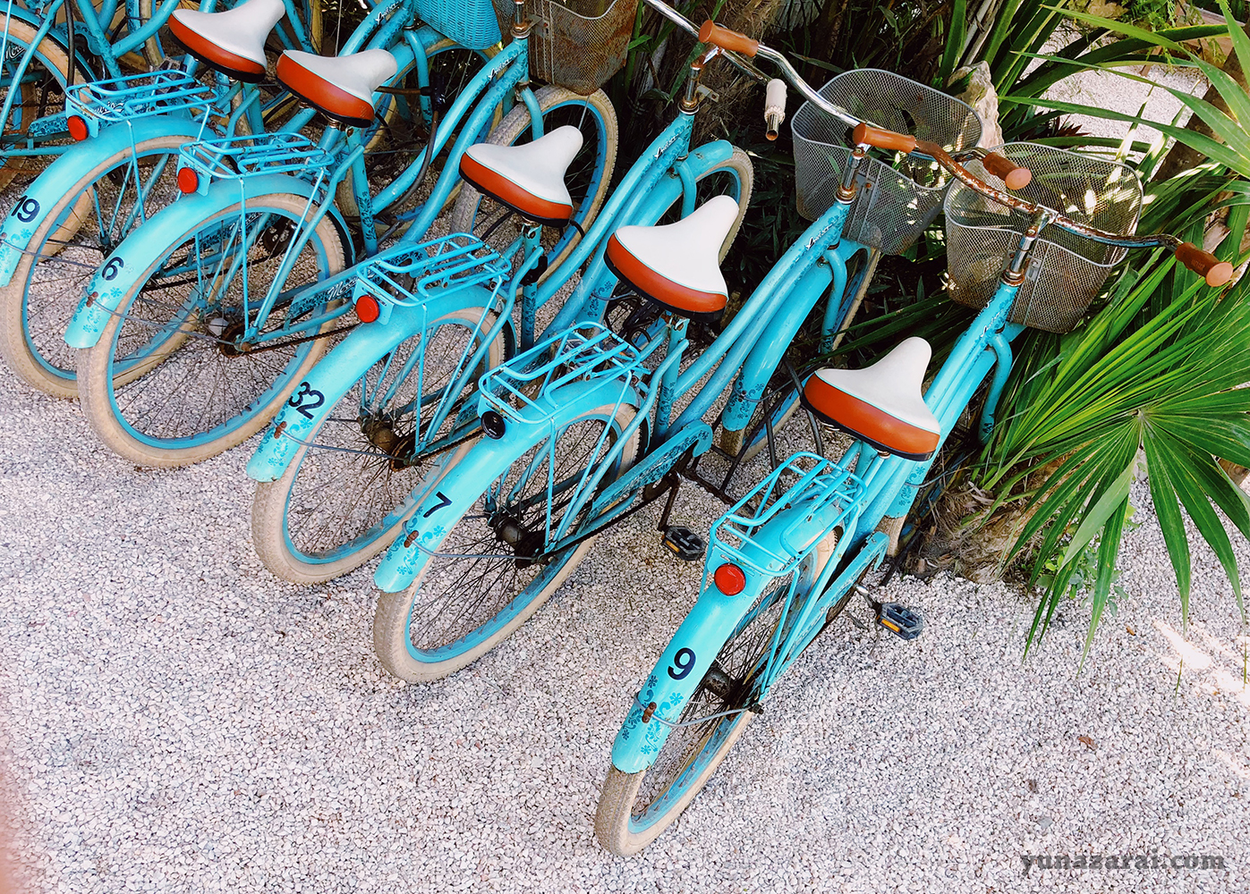 Bikes for rental at Coco Tulum