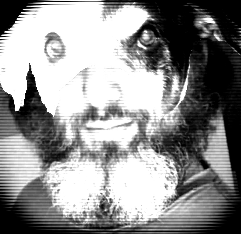 Bearded Peyote TV.jpg