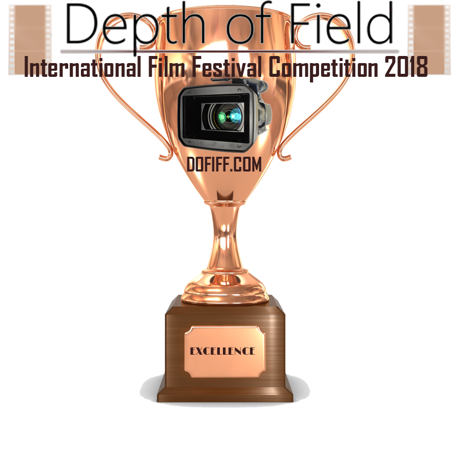 Excellence trophy 18.png