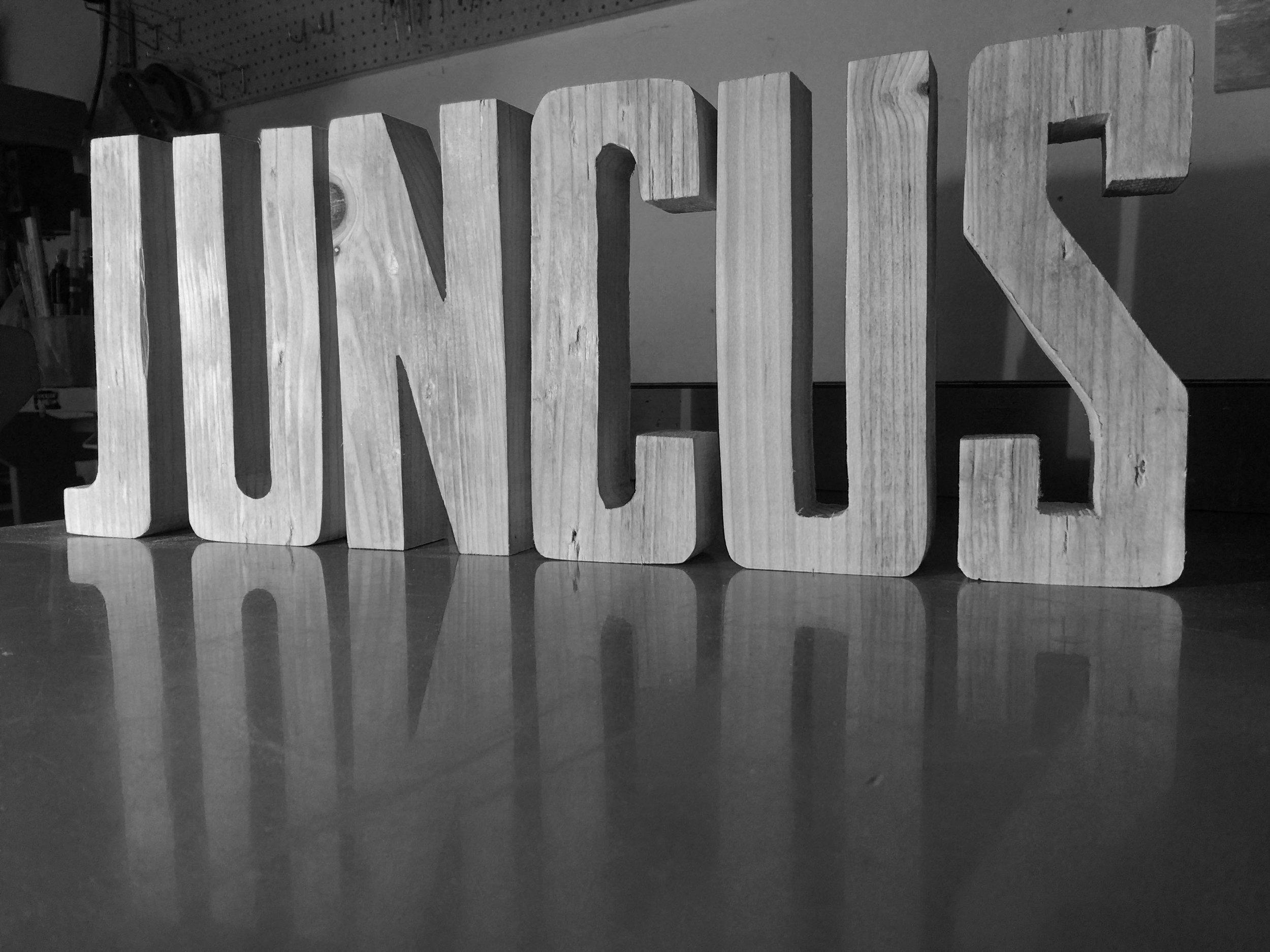 Juncus Wood Cutout_BW.jpg