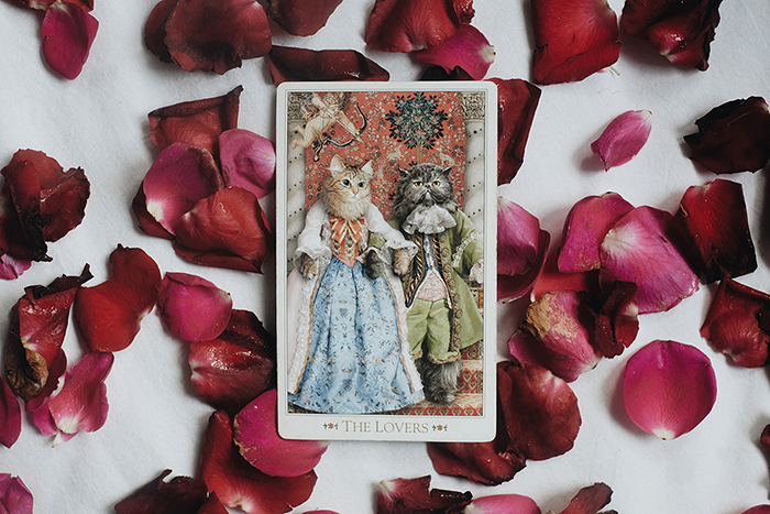 The Lovers - The Baroque Bohemian Cats Tarot by The Baba Studio
