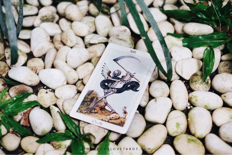 Death - Foxglove Tarot.jpg