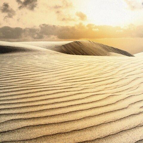 apotheque_spa_treatment-desert-gold-mud.jpeg
