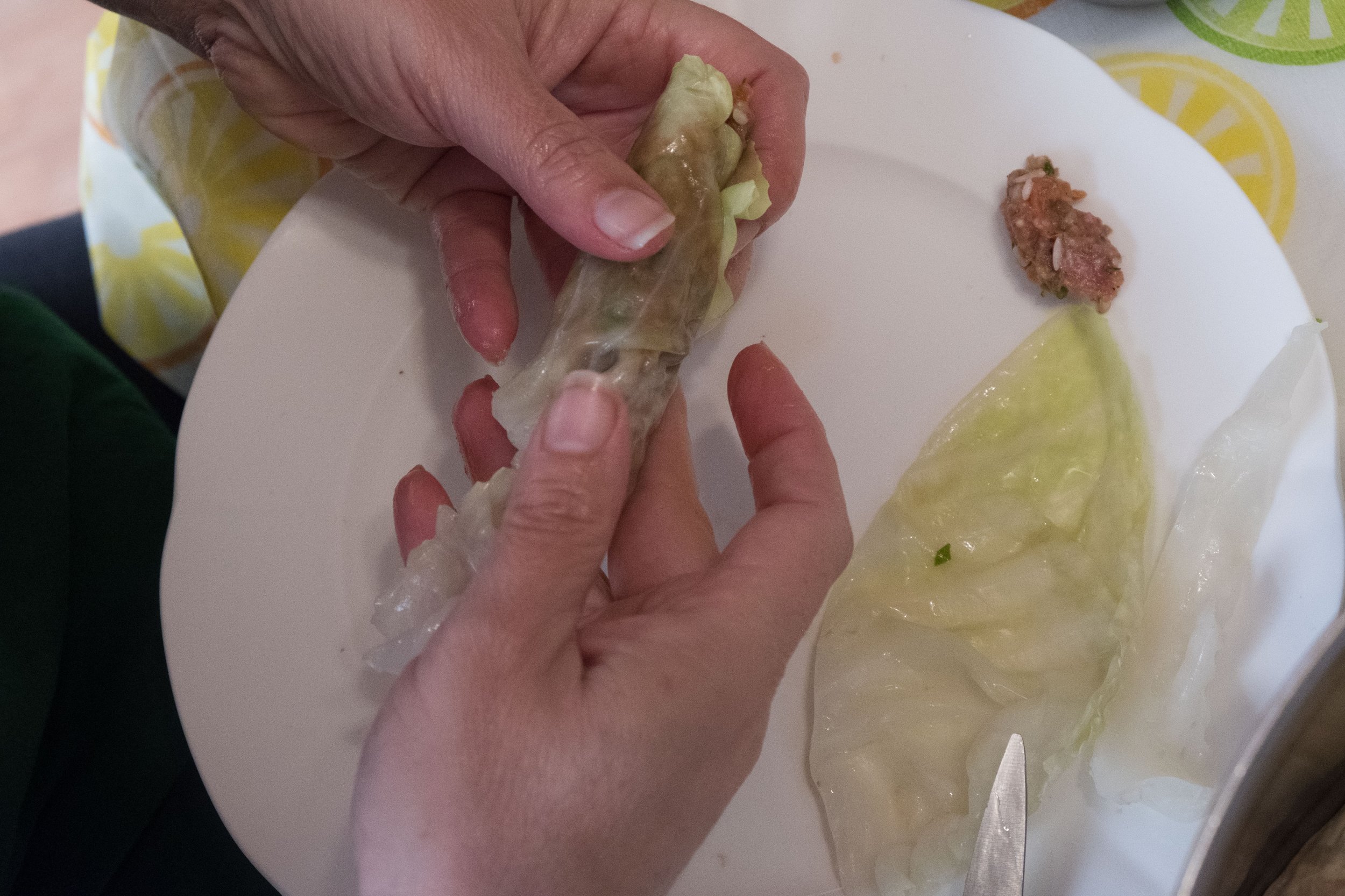 Continue Cabbage Roll 1.jpg