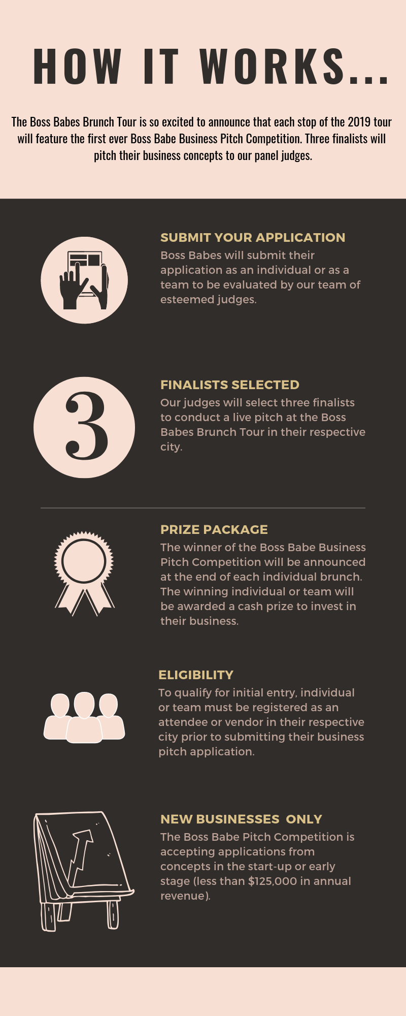 business pitch infographic.png