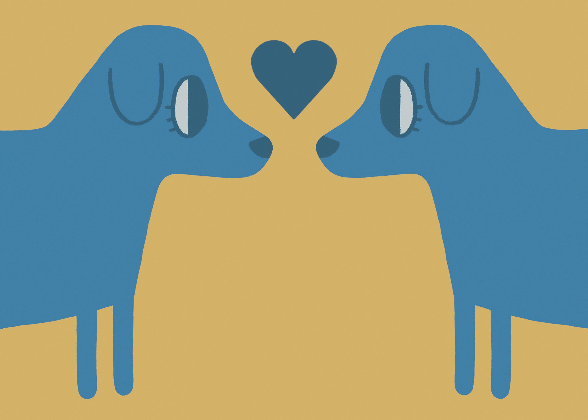 dog love blue 72.jpg