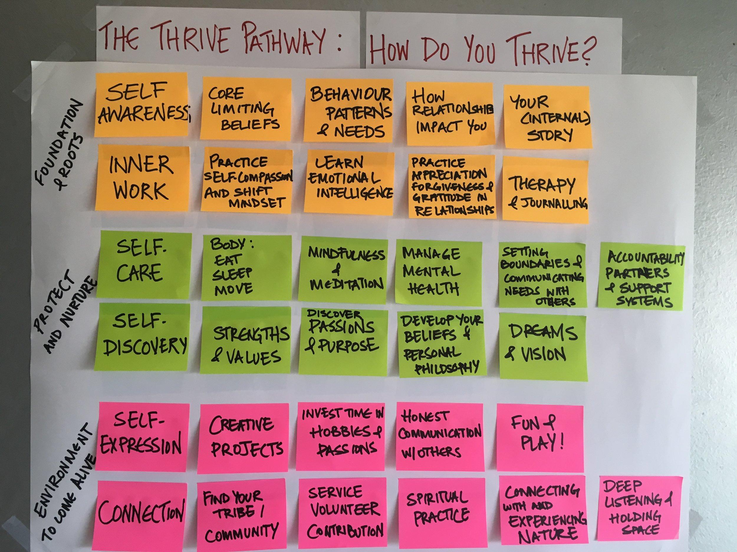 thrive map official v1.JPG