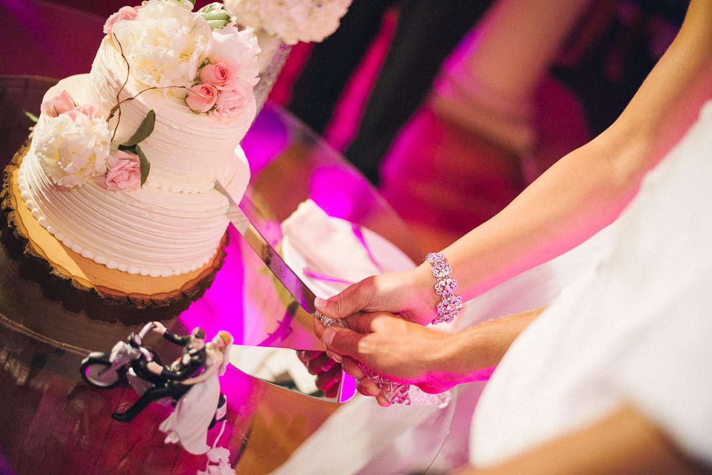 NH Wedding Photographer: cake cutting