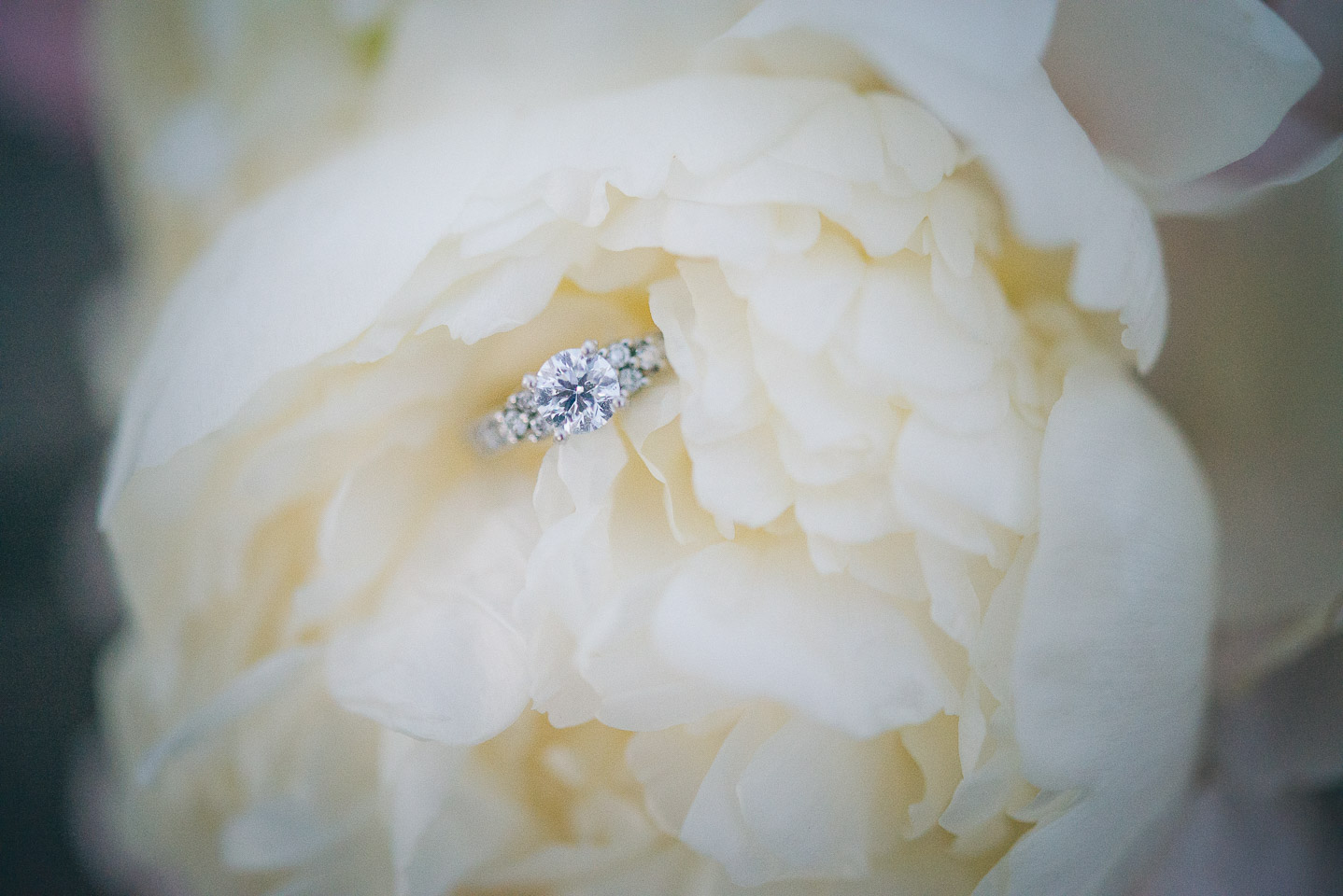 NH Wedding Photography: engagement ring in bouquet