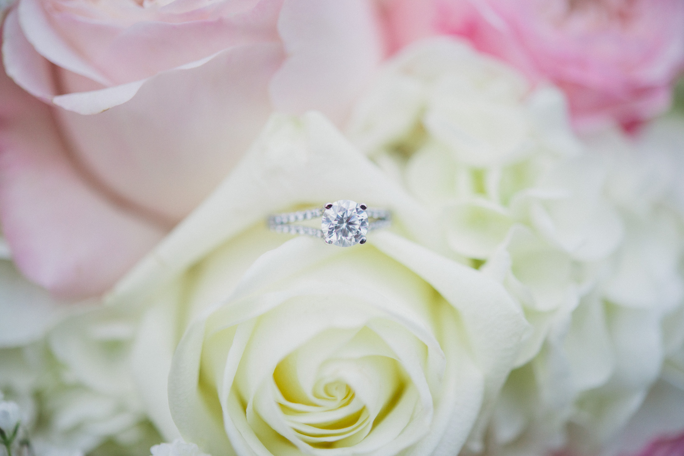 NH Wedding Photographer: engagement ring in flowers