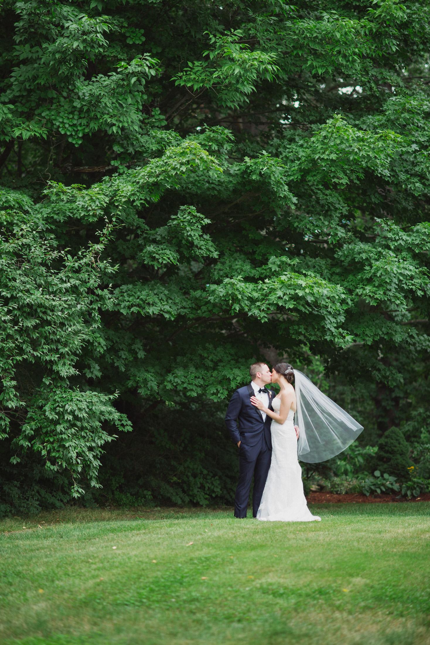 NH Wedding Photographer: couple near trees at BVI