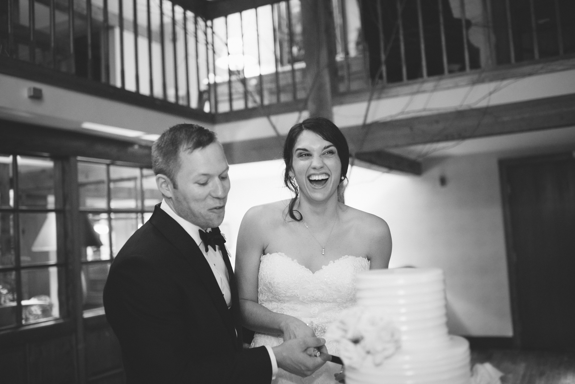 NH Wedding Photographer: reception cake cutting