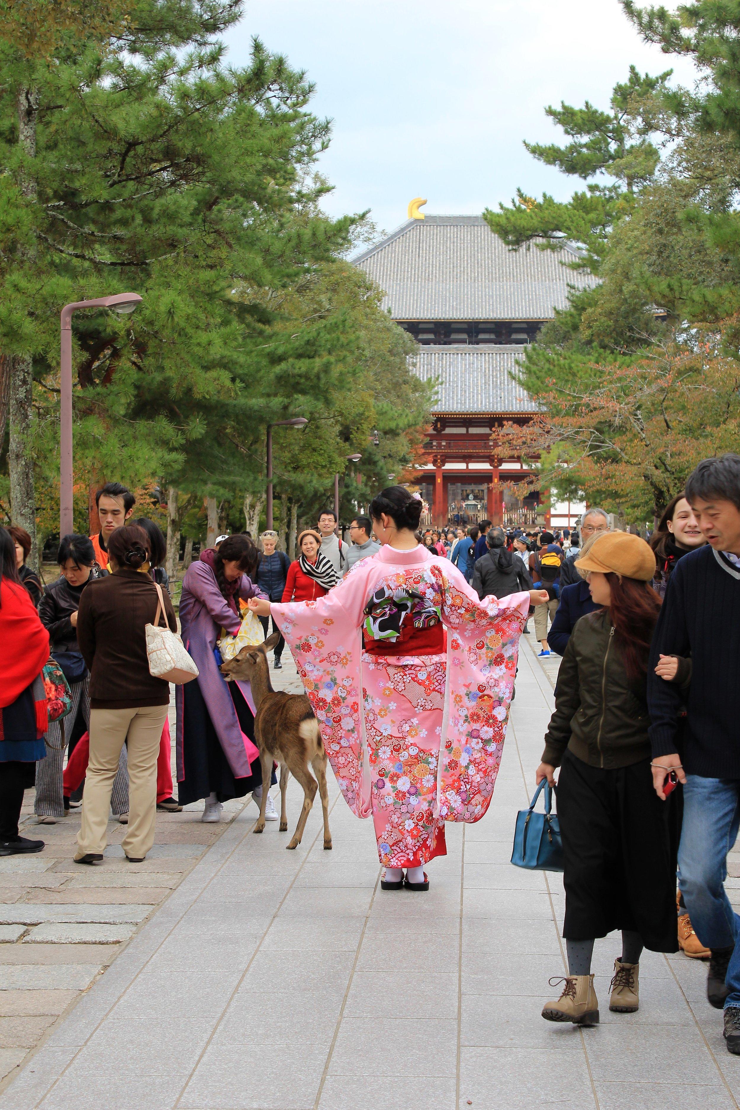 Japanese Geisha at Nara Temples