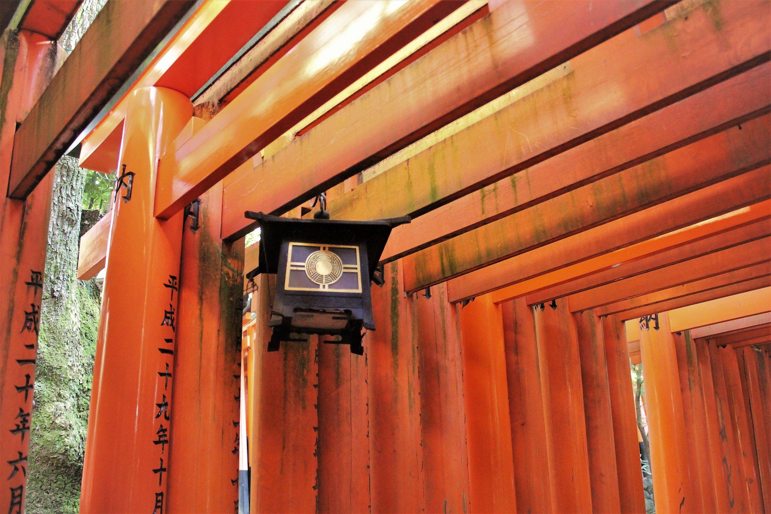 Shinto Shrines at Fushimi Inari Kyoto