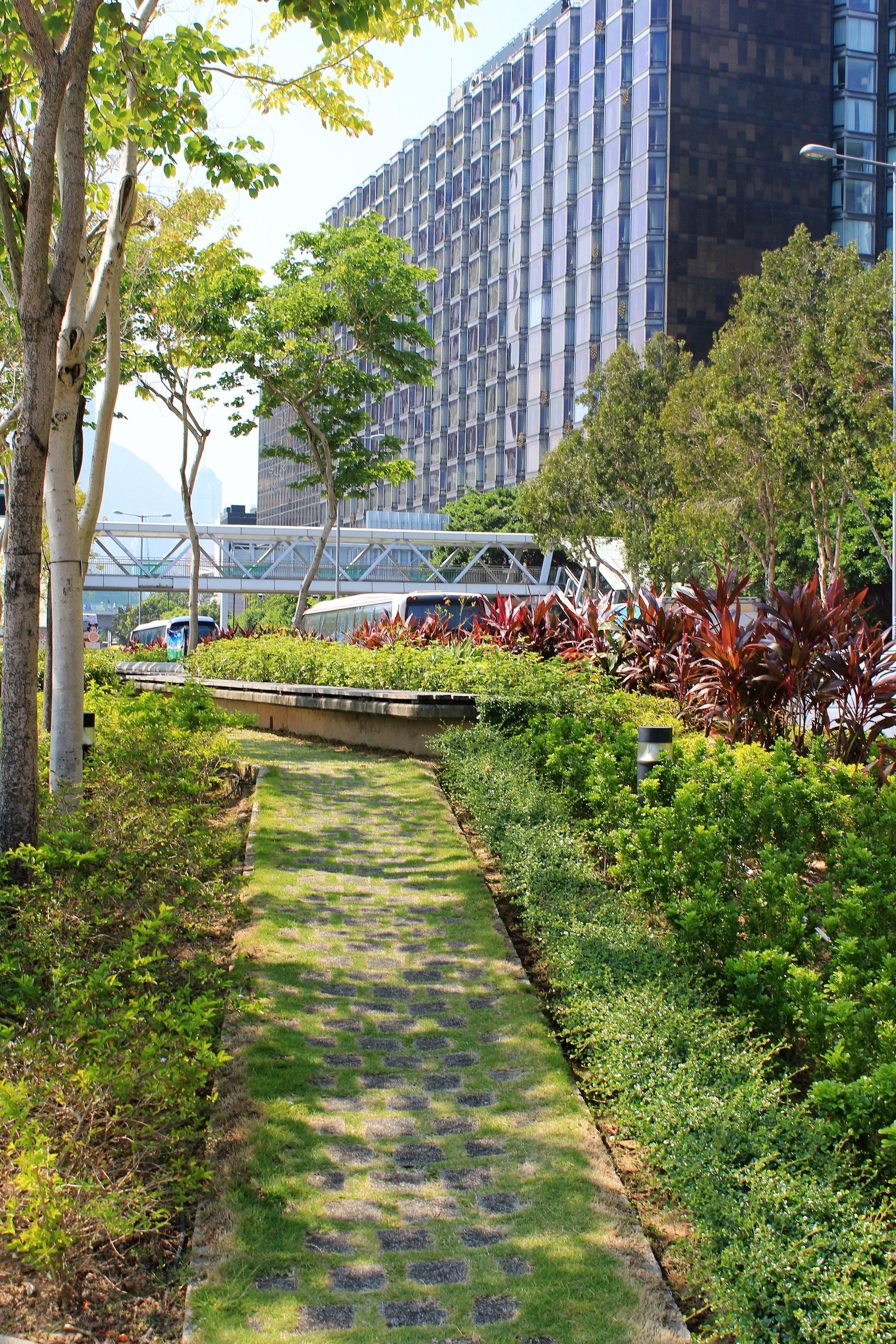 Hong Kong Sidewalk Garden