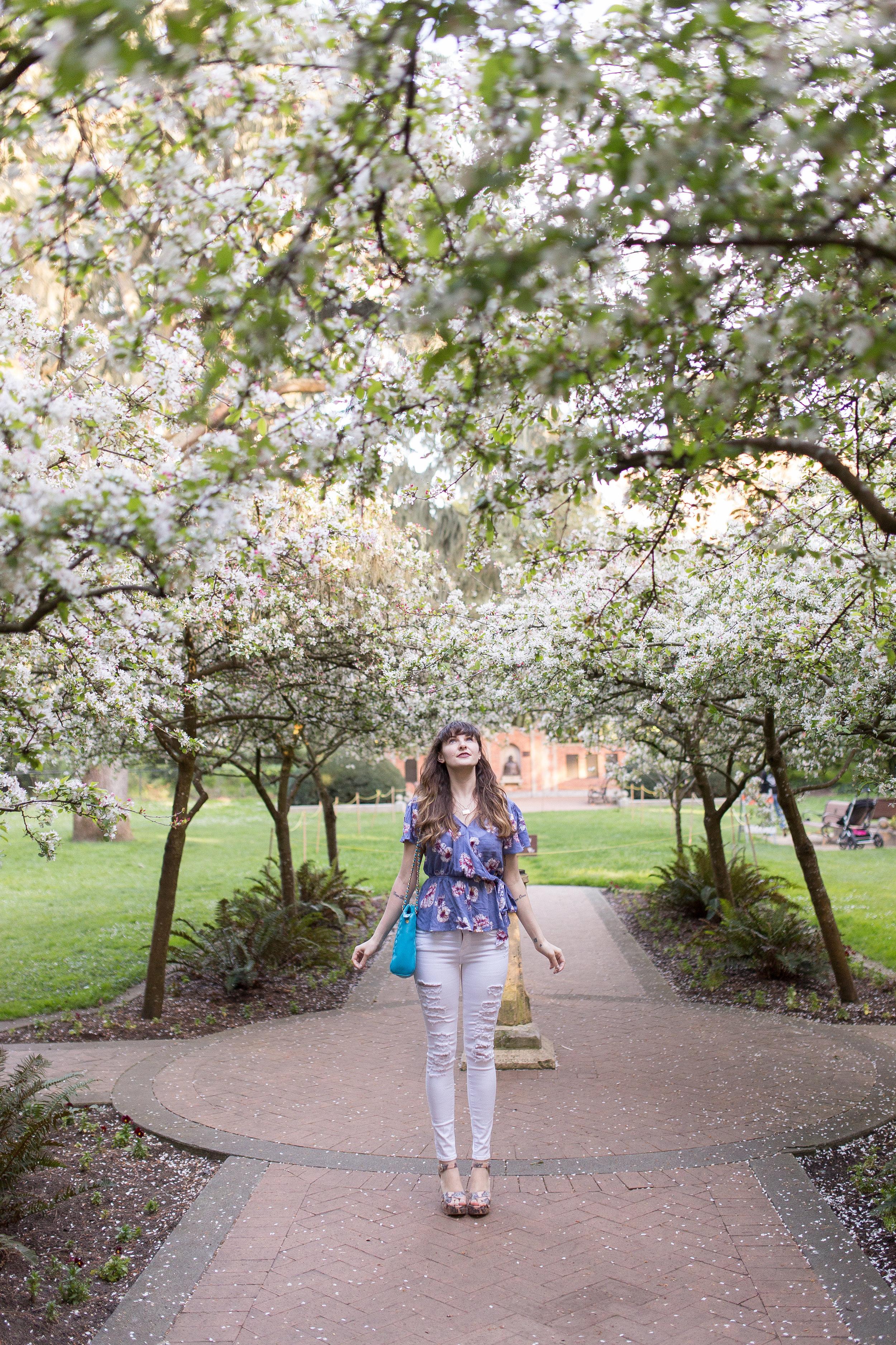 San Francisco's Shakespeare Garden