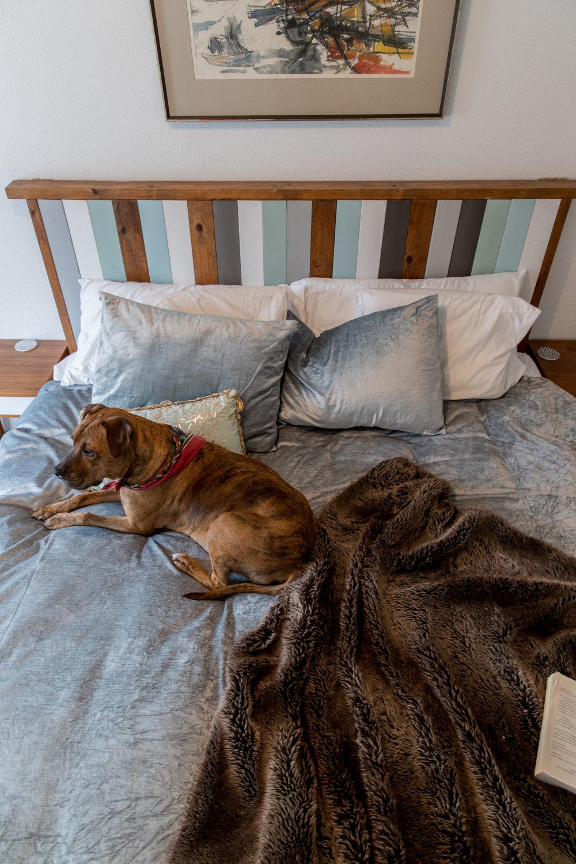 Cozy rustic bedroom - Que Sera Sahra's SF Home