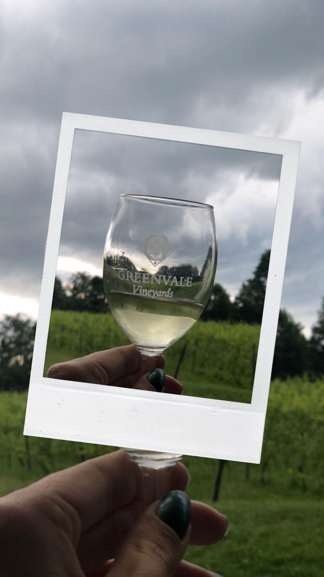 Greenvale Vineyards / Newport Travel Guide