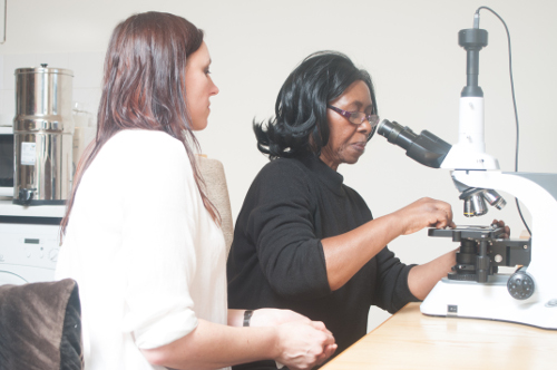 Learning the use of dark field microscopes on the Live Blood Analysis Training Course