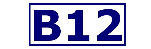 B12.jpg