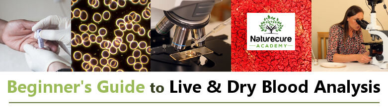 Beginners Guide to Live & Dry Blood Analysis
