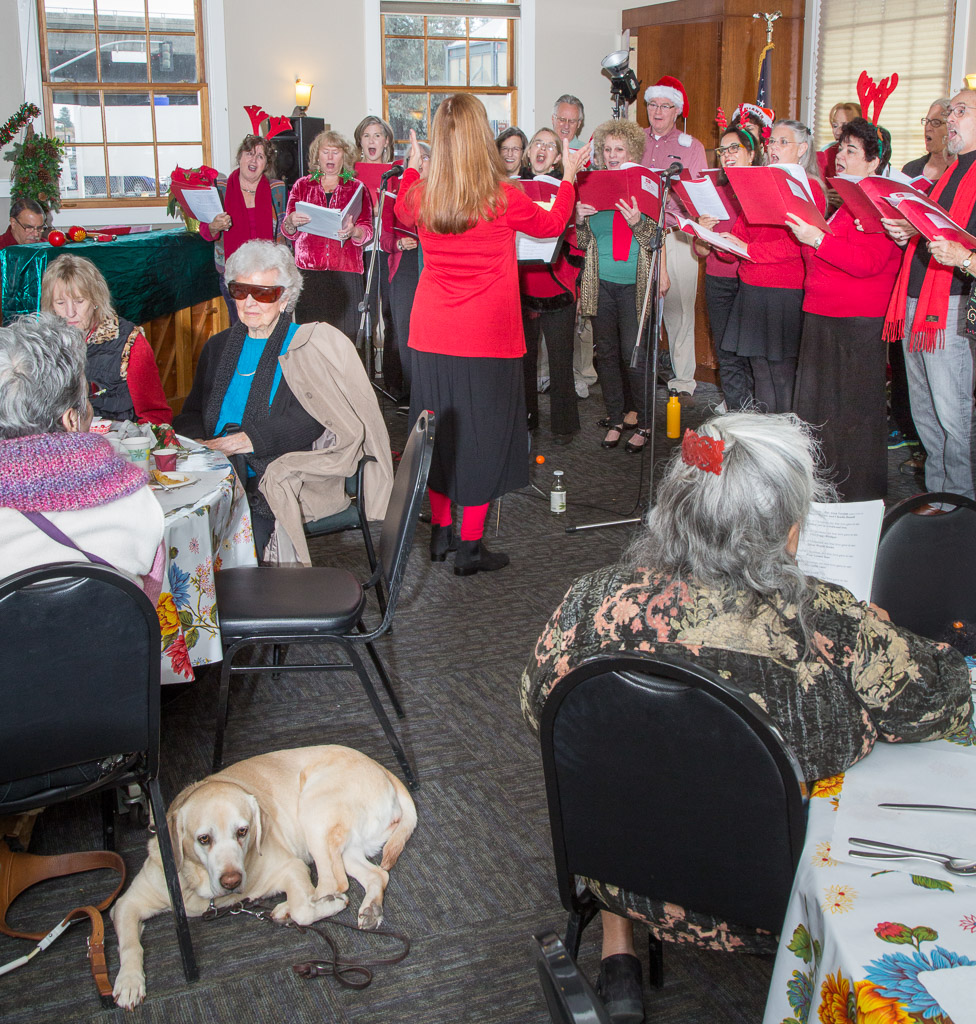 Vision Impaired of Marin Luncheon 5.jpg