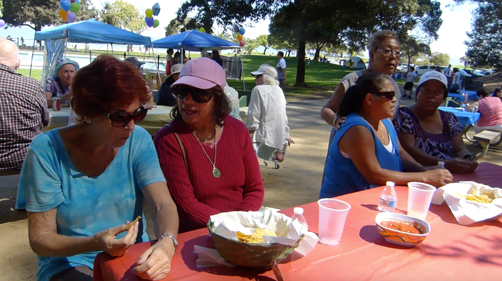 Vision Impaired Annual Picnic 3.png