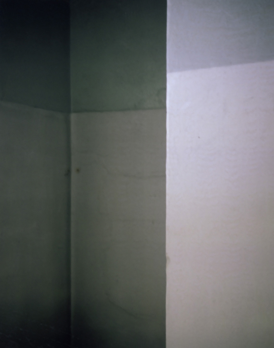 006t.jpg