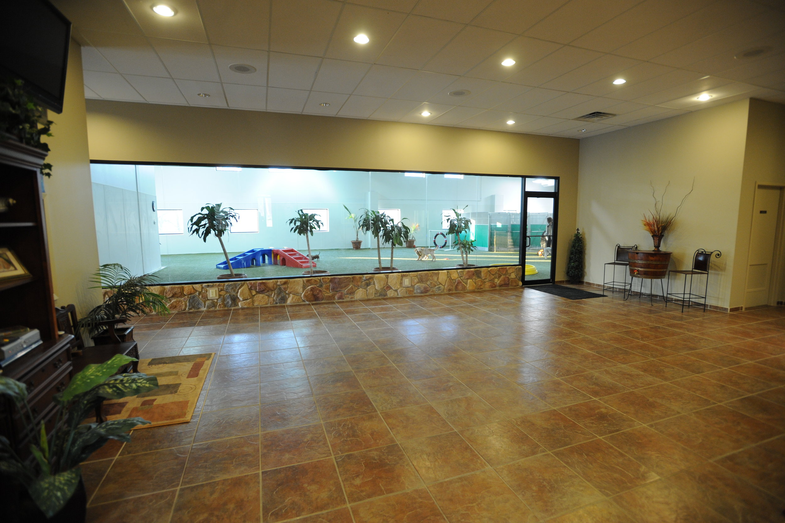 Our spacious facility paired with our unique interior is something that makes Pet Nation Lodge so special. The warmth you feel when you're here is something we pride ourselves in.
