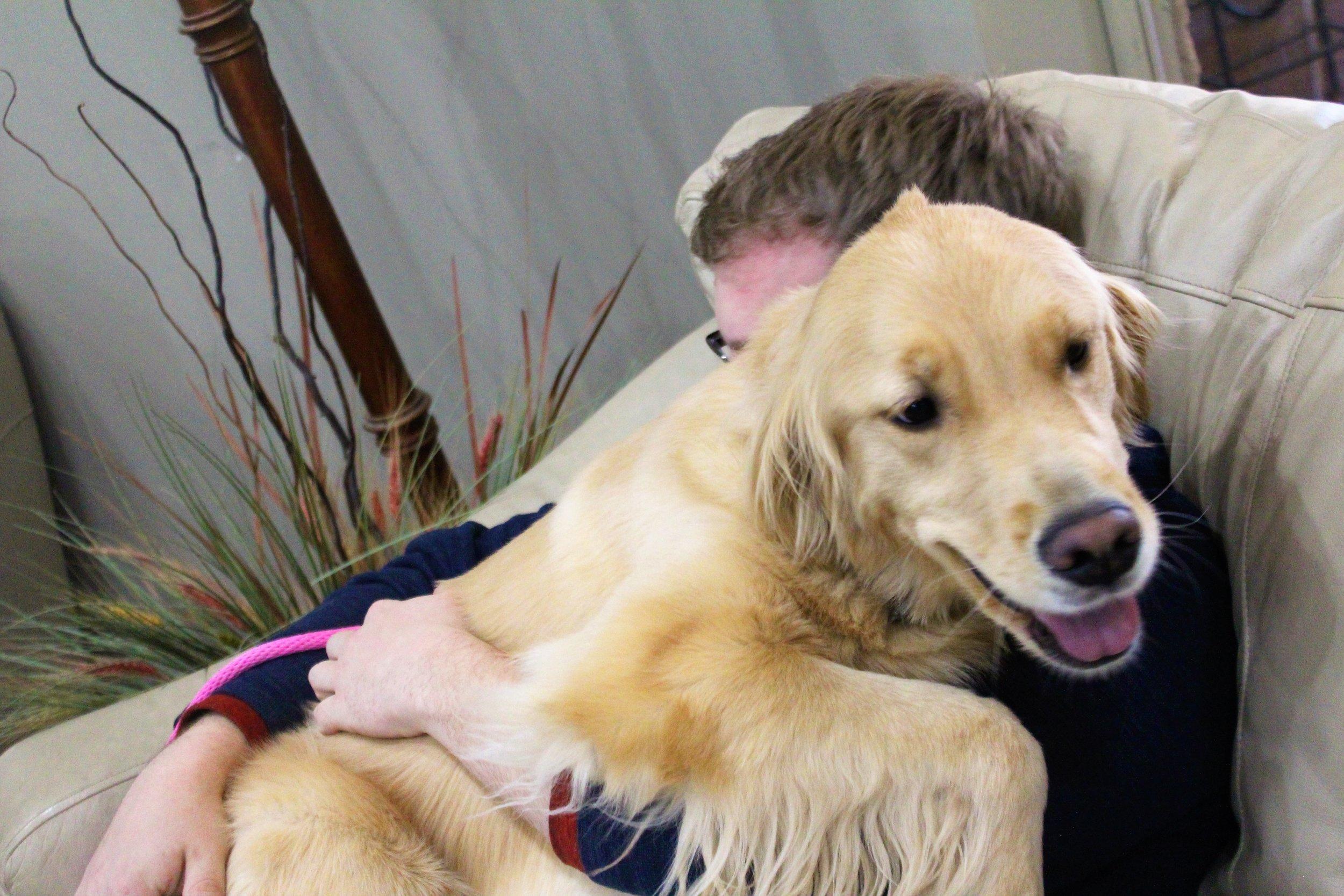 Pet Nation Lodge Daycare Dog Rosie 3