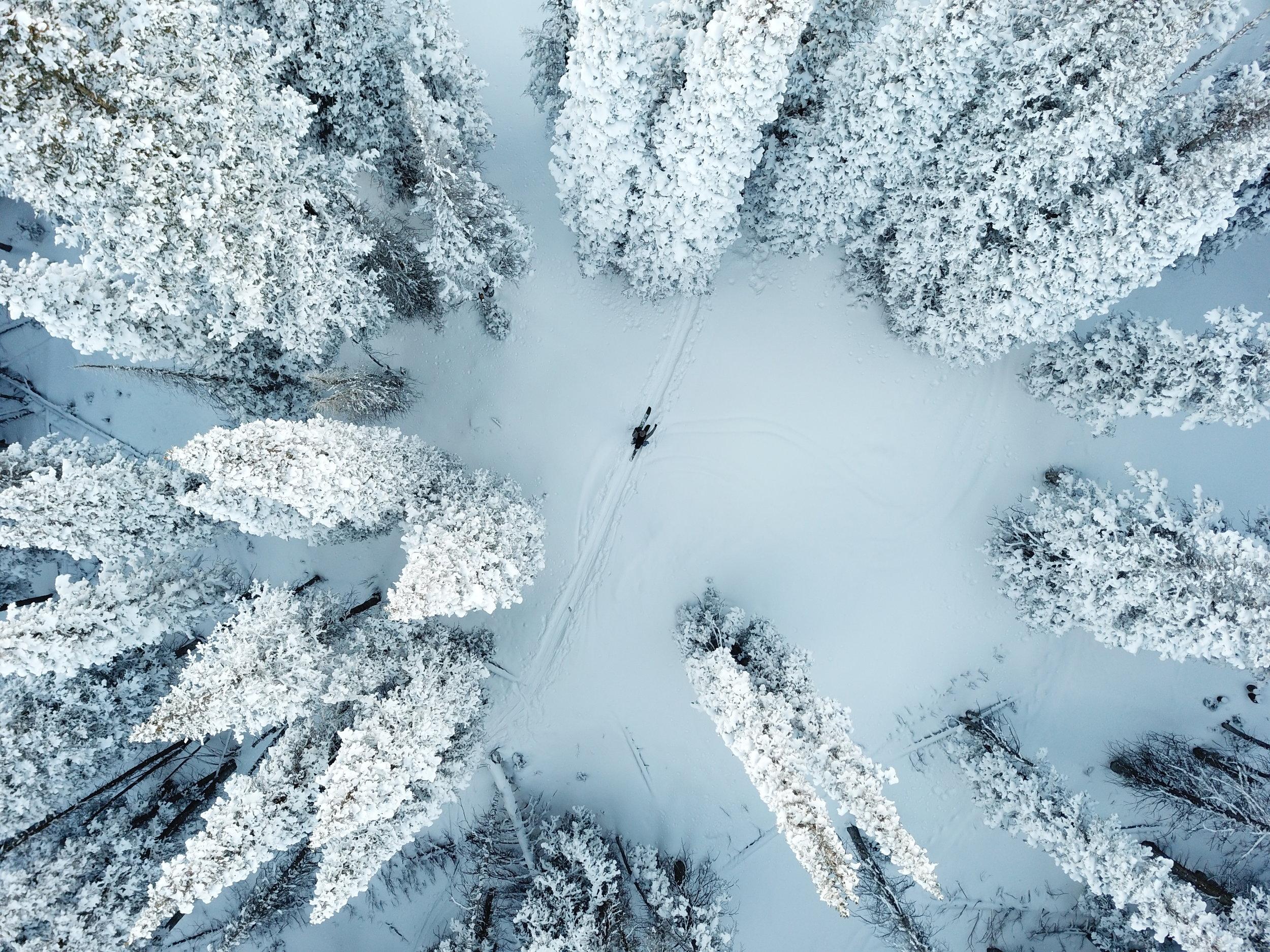The CARDIFF SNOWcraft Story