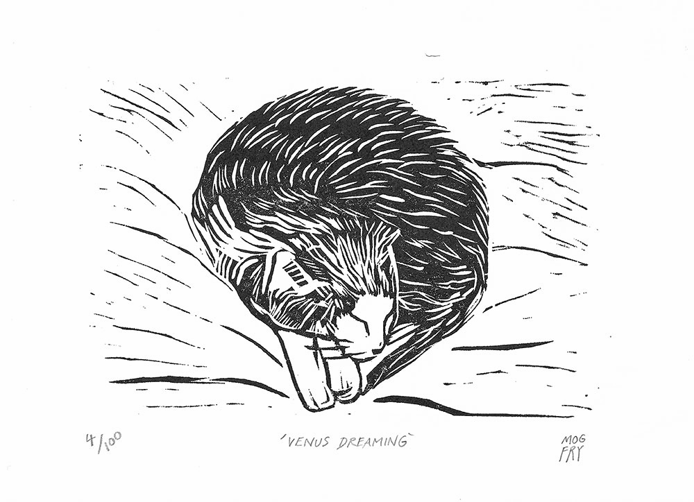 This linocut was inspired by my grandmother's cat who sleeps all day and night in the shed or on the bed!  Linocut printed by hand on Japon Simile paper.