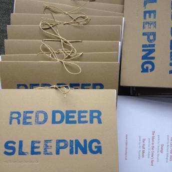 RedDeerSleepingSanctumProgrammes.jpg