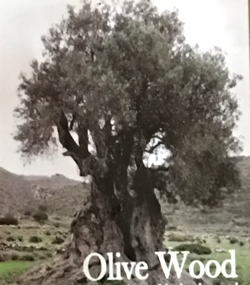 A blessed olive wood tree (3000 years old)