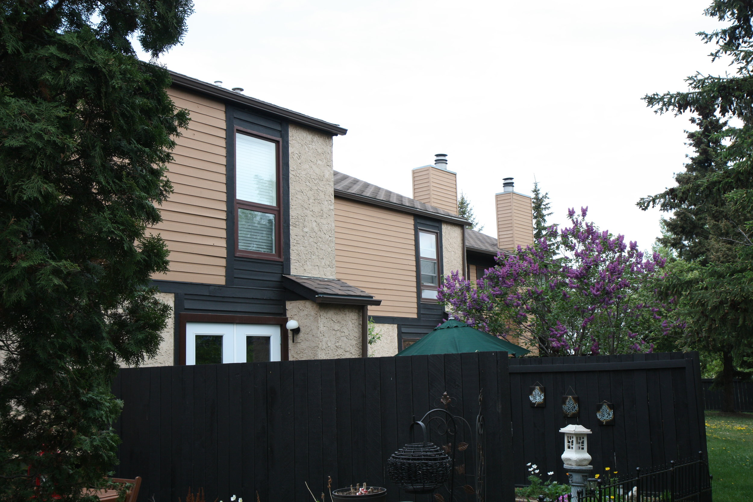 complete painting of cedar siding