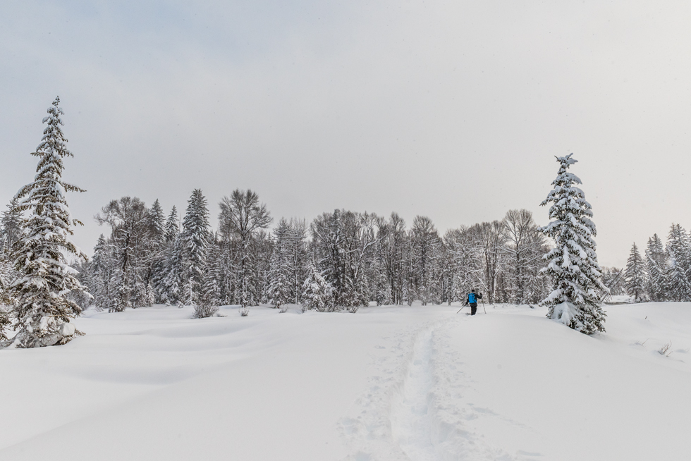 Snowshoeing by the house.jpg
