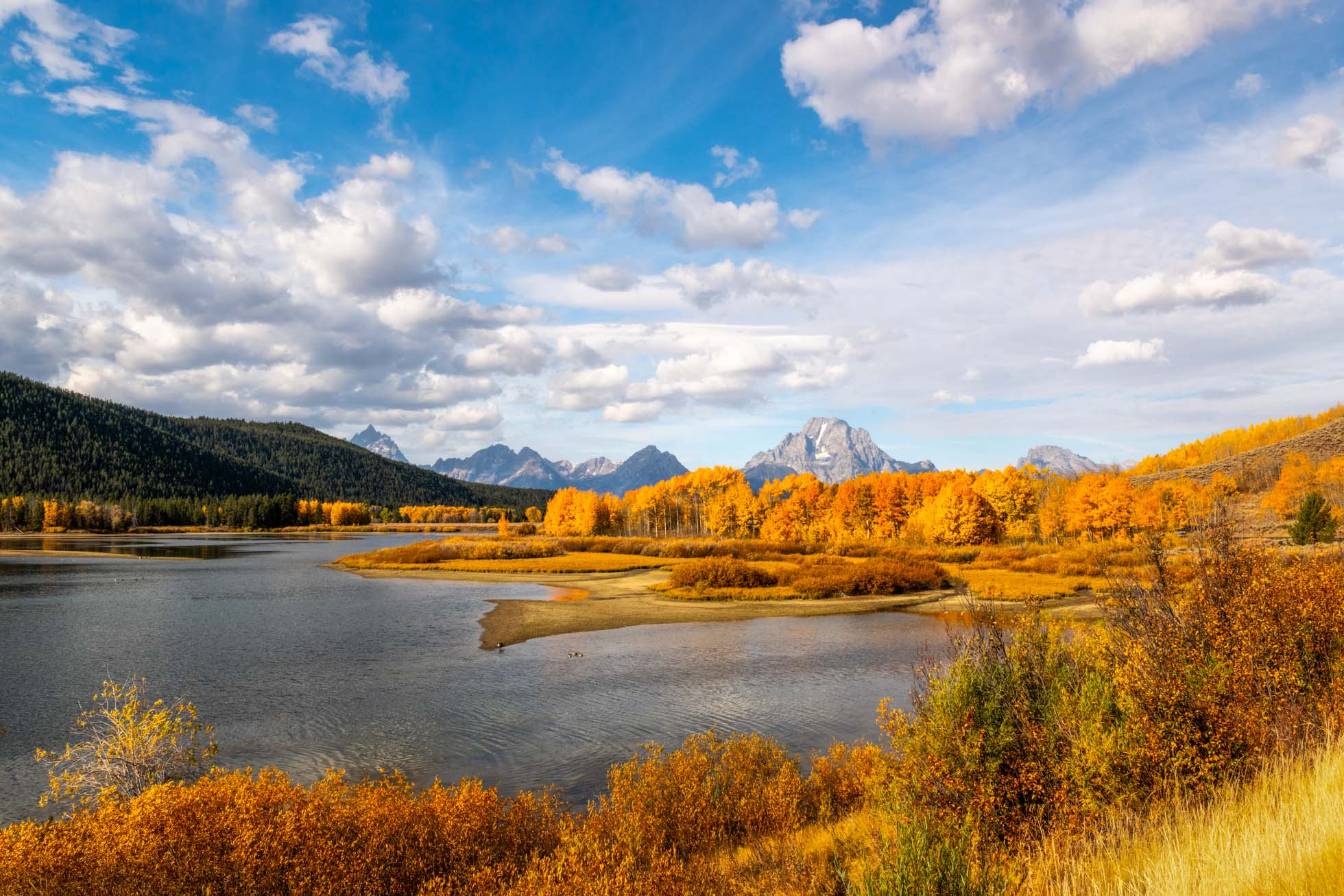 A gorgeous autumn afternoon in Grand Teton National Park
