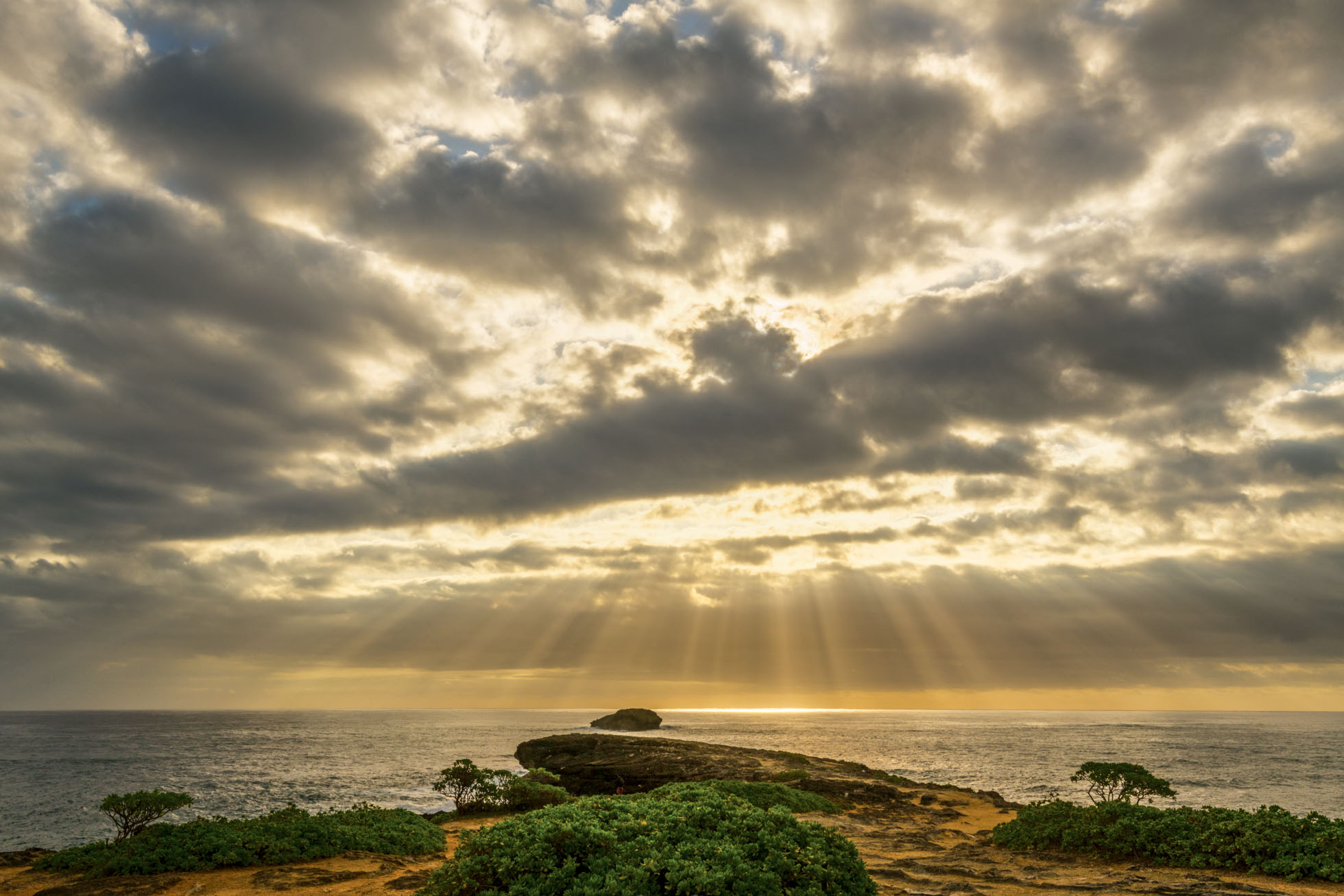 Oahu sunrays_.jpg