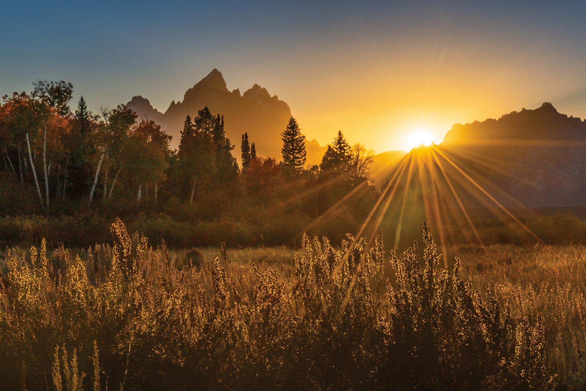 Teton golden sunset tighter crop_.jpg