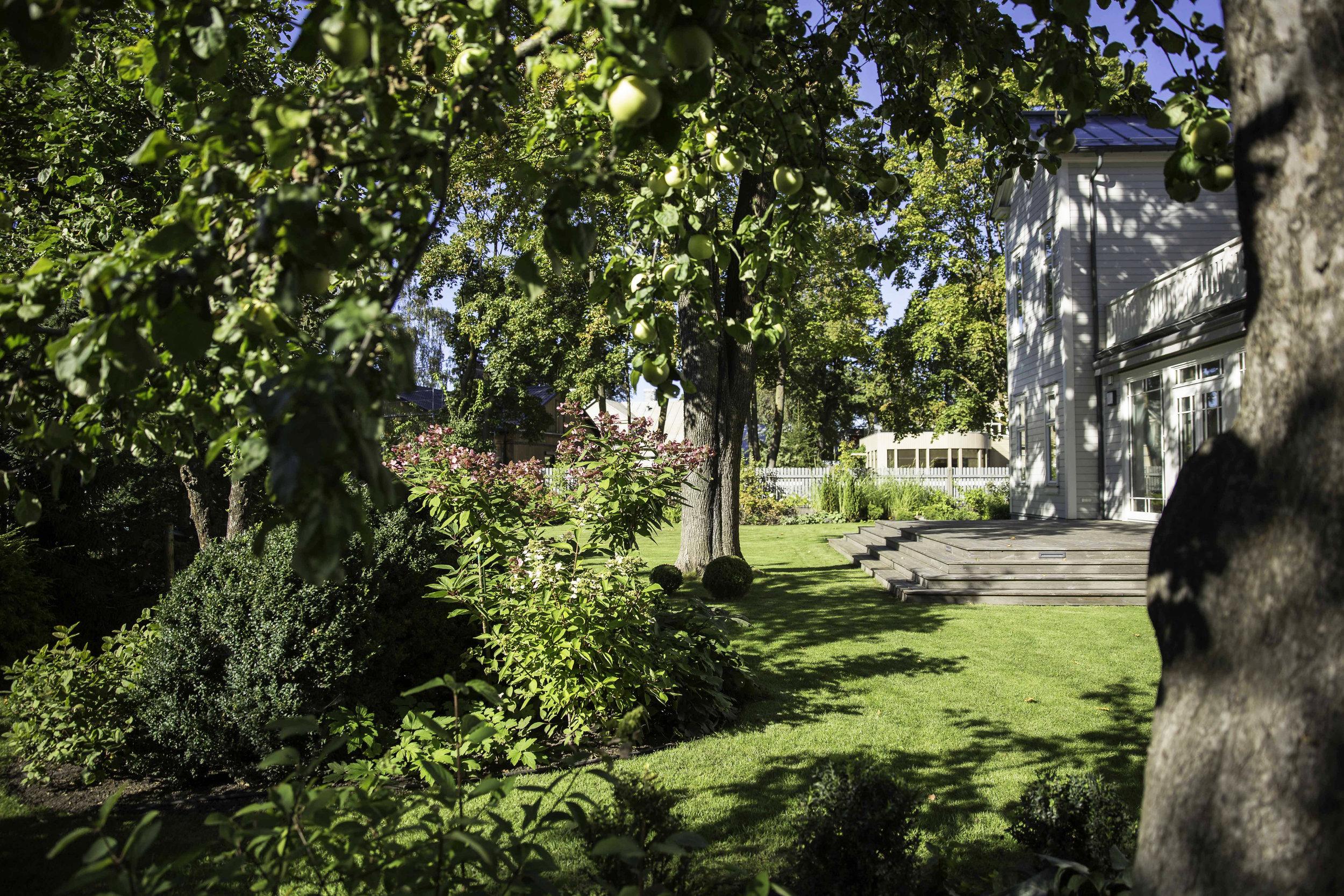 LABIE-KOKI-Darzi-portfolio-gardening