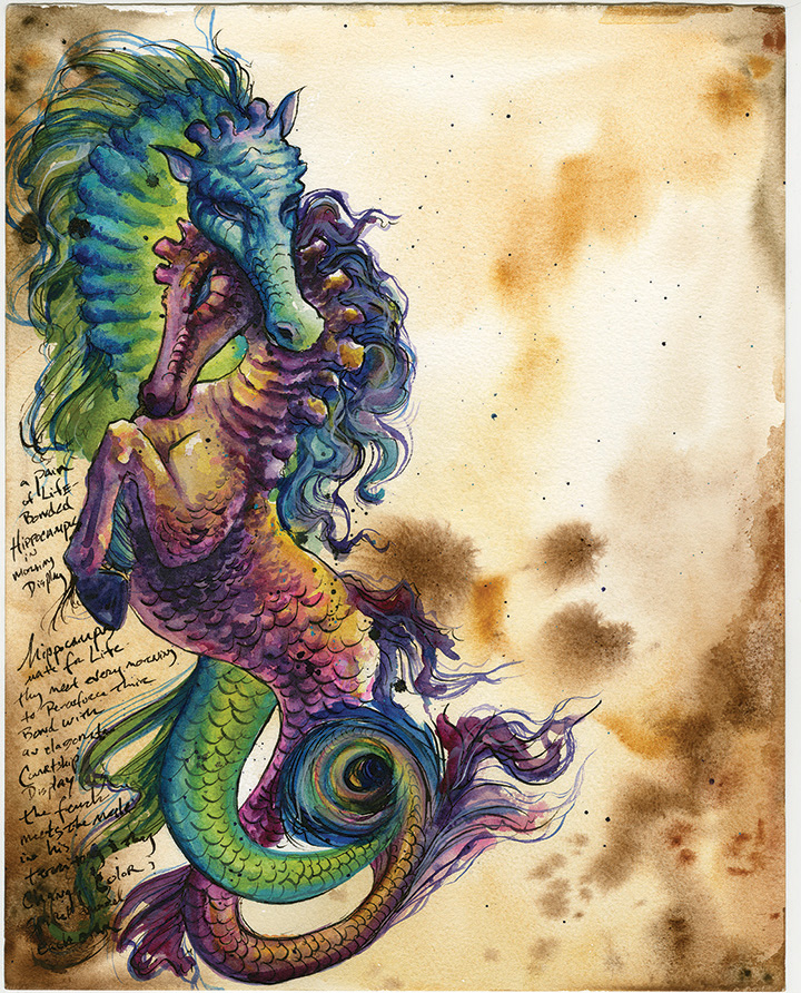 Hippocampus Facing Page-ADOPTED