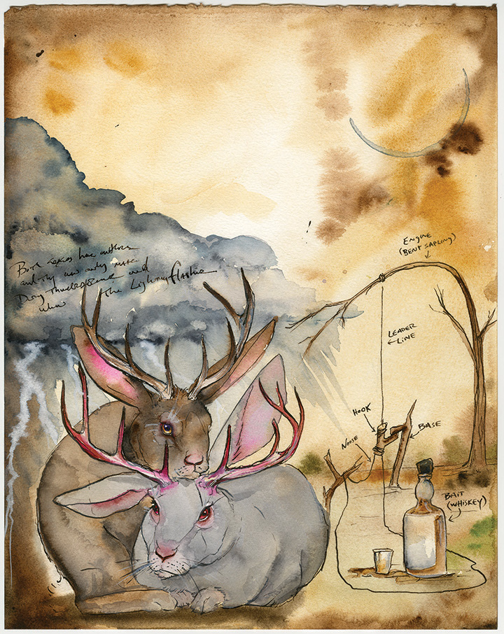 Jackalope Facing Page