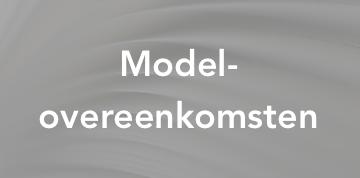 model_overeenkomsten.png
