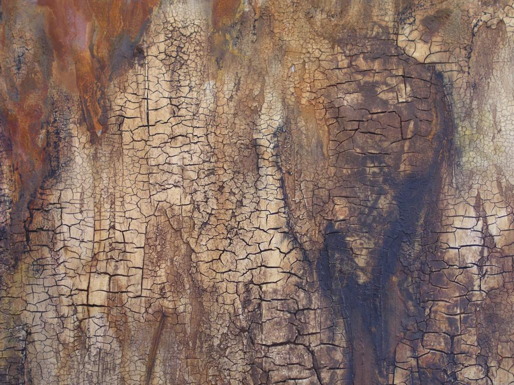 028 2009 Vulkan2- Detail .JPG
