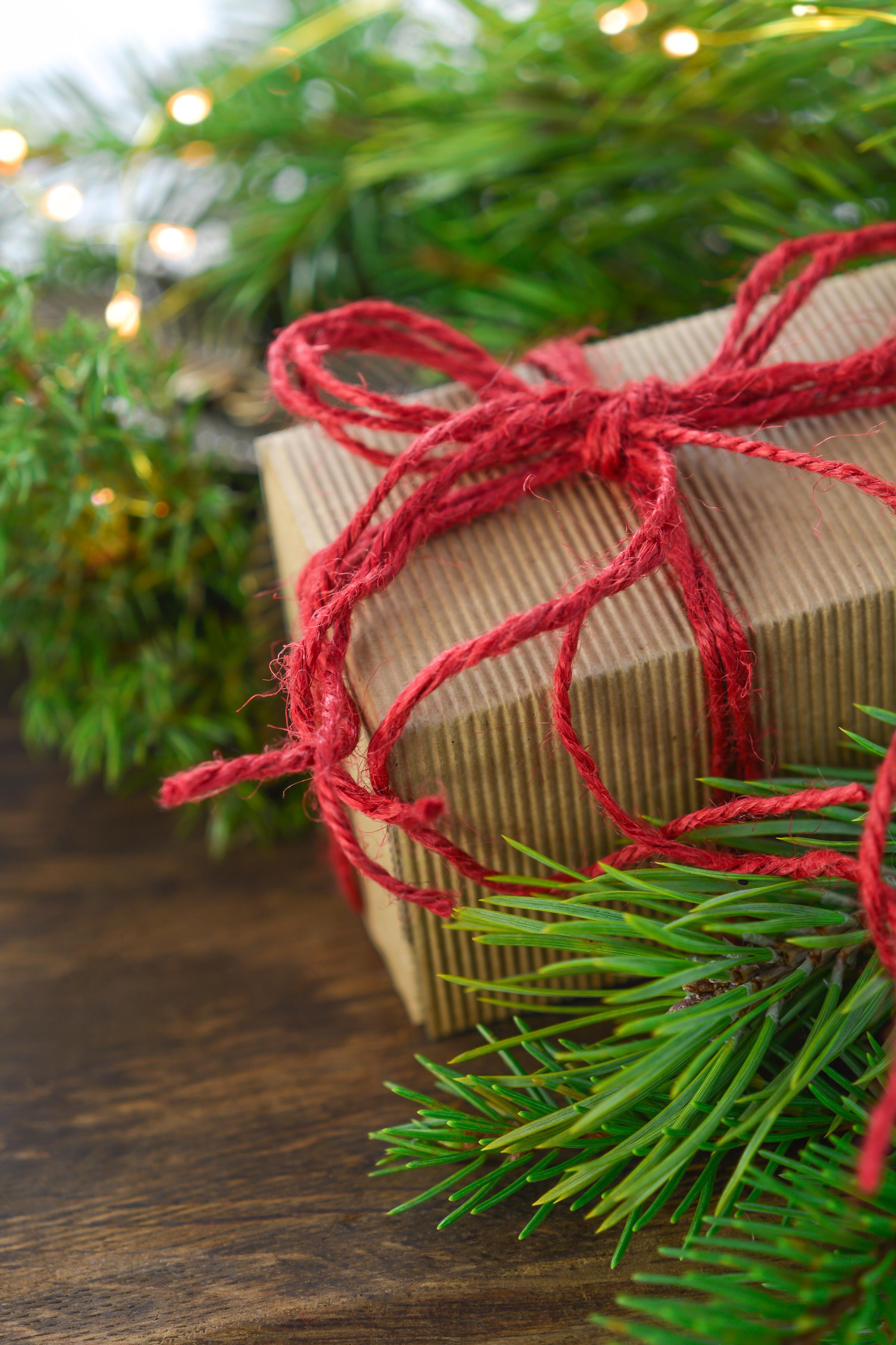 evergreen-holiday-christmas-fir-christmas-ornament-christmas-decoration-1418258-pxhere.com.jpg